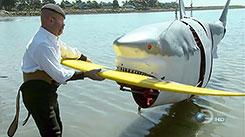Неделя акул-2008
